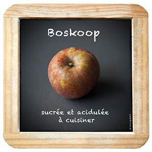 Ardoise_Boskoop