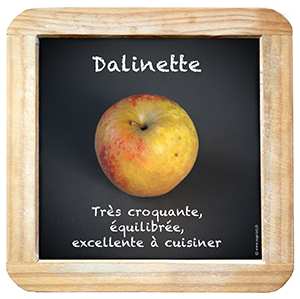 Ardoise_Dalinette