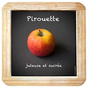 Ardoise_Pirouette