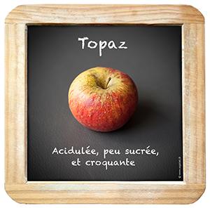 Ardoise_Topaz